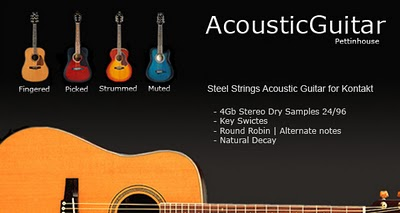 acoustic guitar pettinhouse chitarra acustica virtuale
