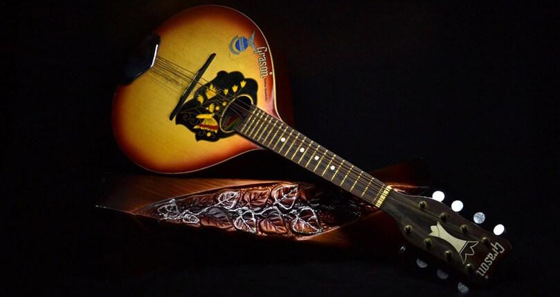 Migliore mandolino, prezzi e consigli su quale acquistare