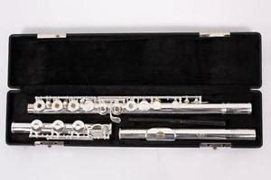 Il migliore flauto dolce, marchi per principianti e non