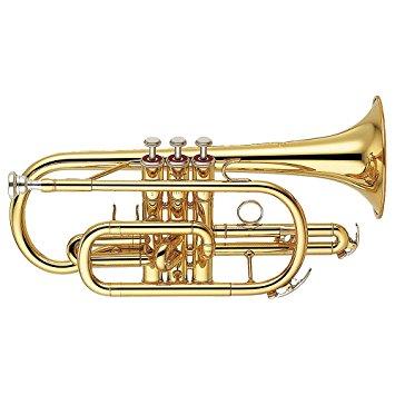 Qual'e la migliore cornetta? prezzi e marchi consigliati